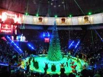 Новогодние экскурсии в цирк и на каток